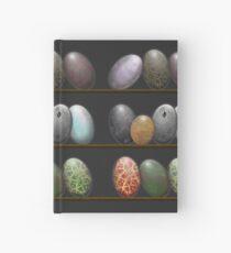 Shelf full of Dragon eggs Hardcover Journal