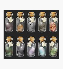 Dragon Eggs *Complete collection* Photographic Print