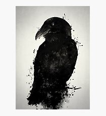 The Raven Photographic Print