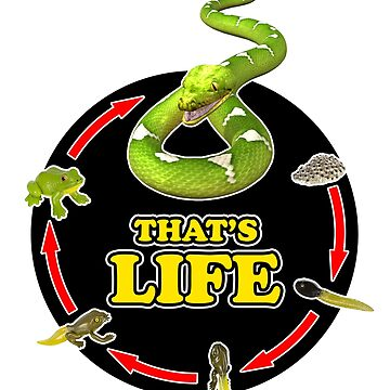 That's Life - Frog's Life by rogerpmit2