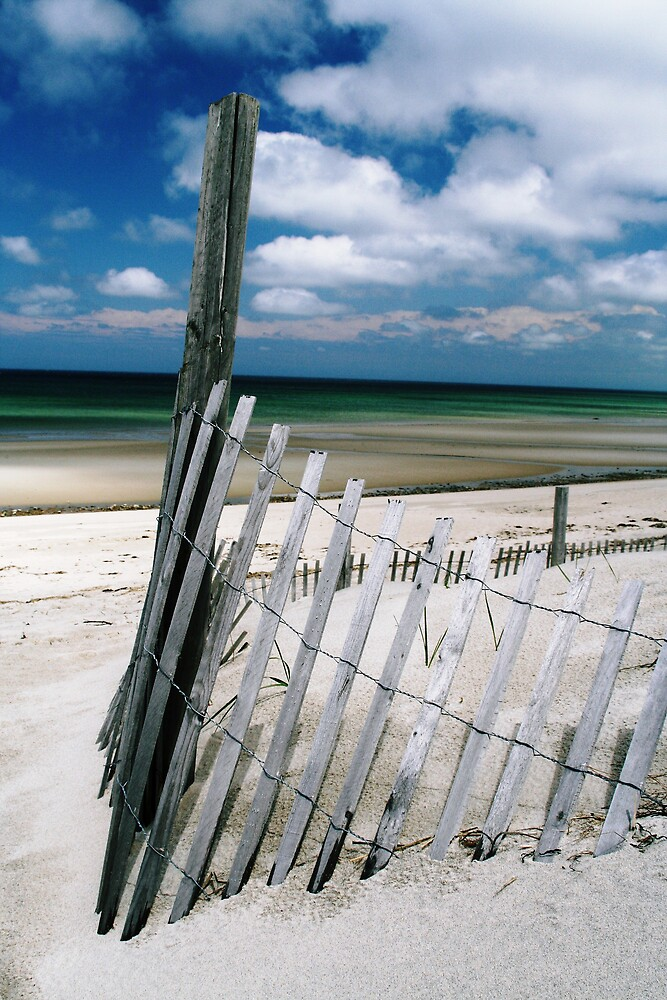 Lifes a beach by Jeff  Wilson