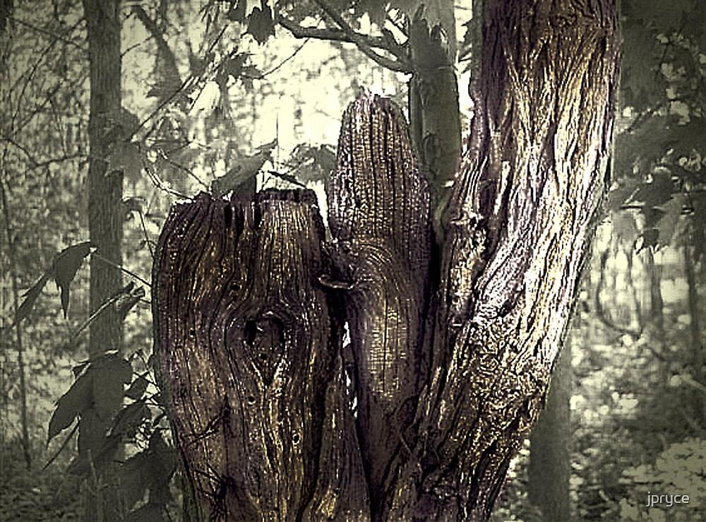 Deadwood by jpryce