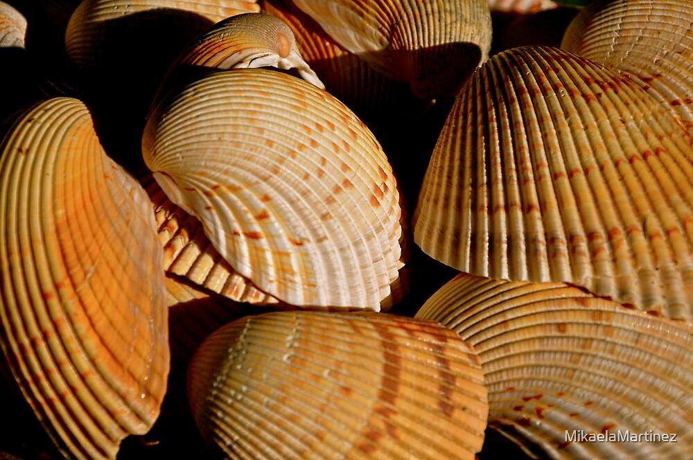 Shells by MikaelaMartinez