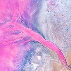 Kalbarri Pink Salt Lake Western Australia by Kirk  Hille