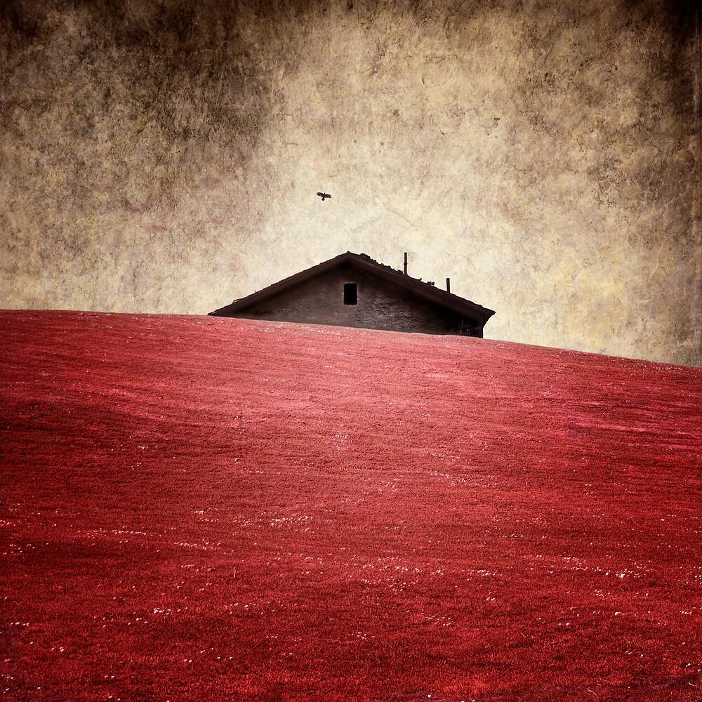 la casa by Luis Beltrán