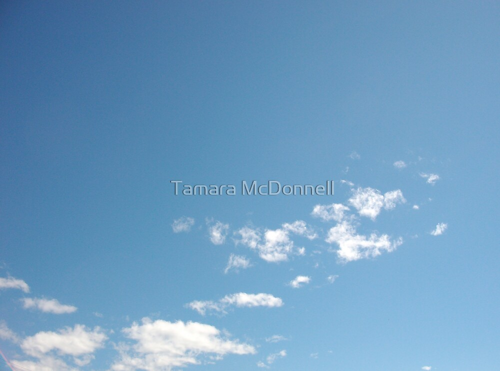 Clear Minded by Tamara Lindsey