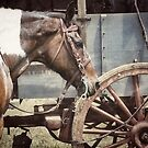 Horse and Wheel  by ArtbyDigman