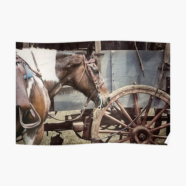 Horse and Wheel  Poster