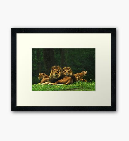 pride of place Framed Print