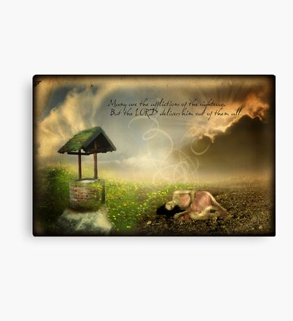 Many are the Afflictions Canvas Print