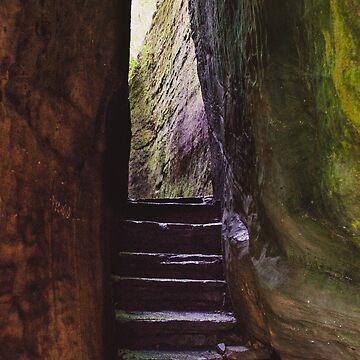 Rim Rock Stairs by lindsayosborne