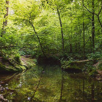 Serene Stream by lindsayosborne