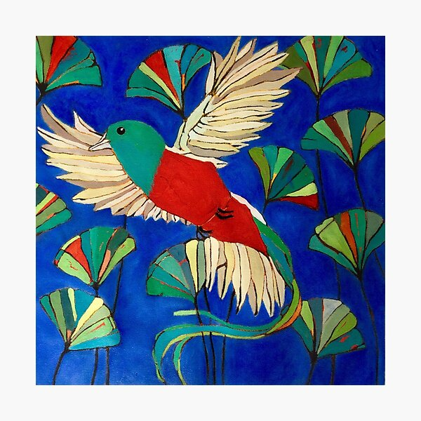 Quetzal Photographic Print