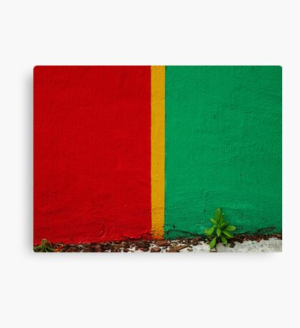 In so many different ways Canvas Print