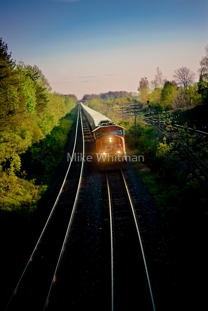 The Train With A View by Mike Whitman