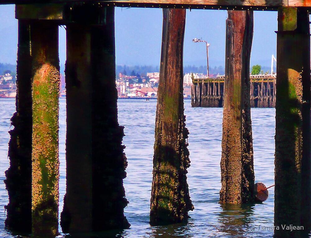 Piers Beyond Pier by Tamara Valjean