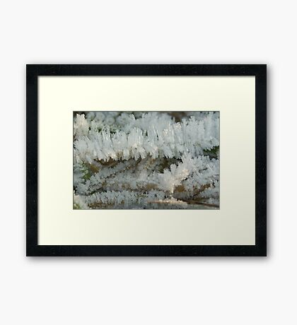 Fascinating Ice crystals 6 Framed Print