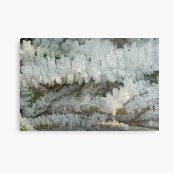 Fascinating Ice crystals 6 Metal Print