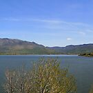Pineview Reservoir by Jess Fleming