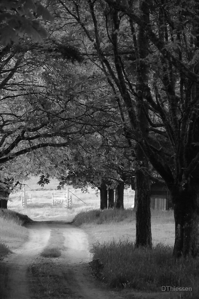 Country Road by DThiessen