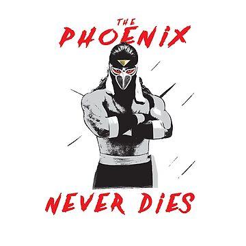 "Hayabusa ""The Phoenix Never Dies""  by cozysuperkick"