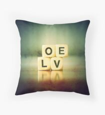 I Cannot Spell, But I Know How You Spell You & Me Throw Pillow