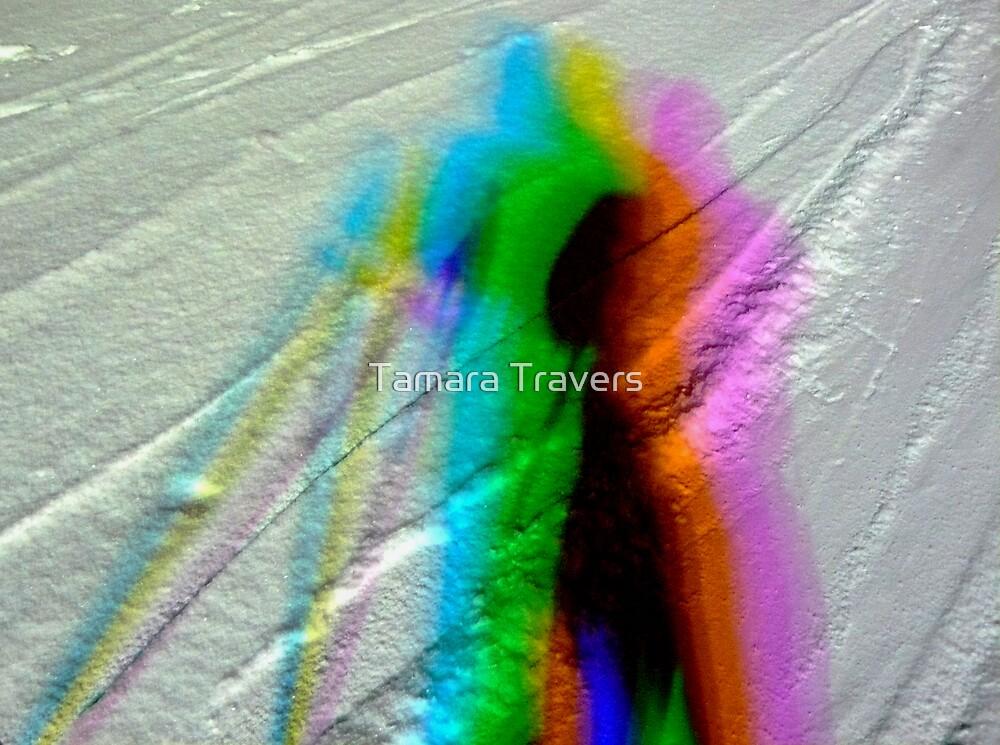 Night shadows on the snow... by Tamara Travers