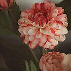 My Sweet Dahlia by Rene Crystal