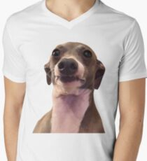 KERMIT  Men's V-Neck T-Shirt