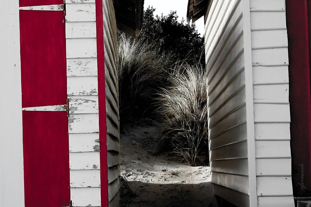 Old Red Beach House by Rukshan Fernando