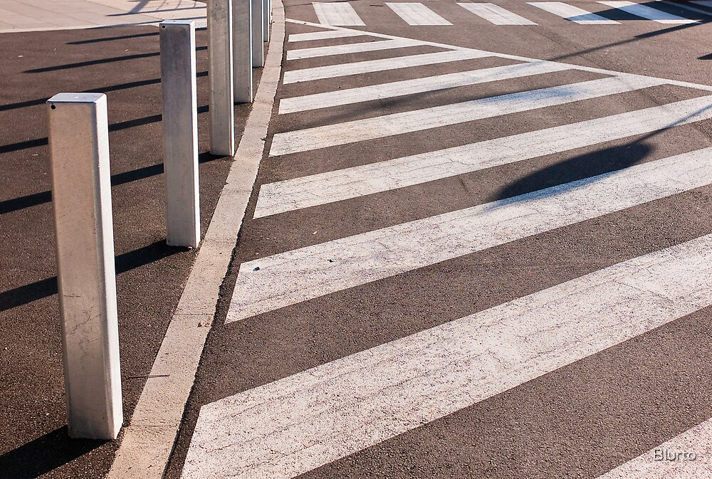 Zebras Crossing by Blurto