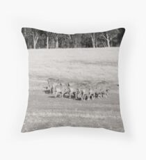 Dry and Dusty Throw Pillow