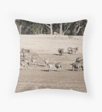 Dry and Dusty 1 Throw Pillow