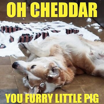 OH CHEDDAR, YOU FURRY LITTLE PIG! by michaelroman