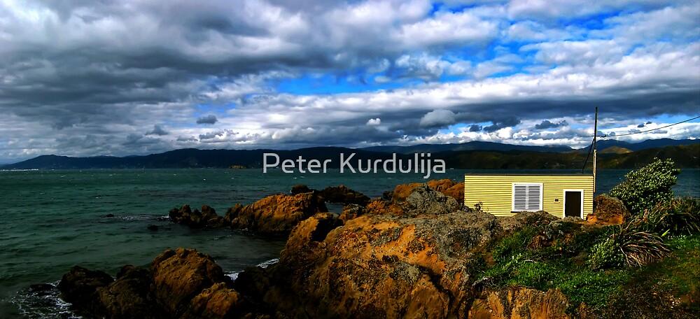 Karaka Bay by Peter Kurdulija