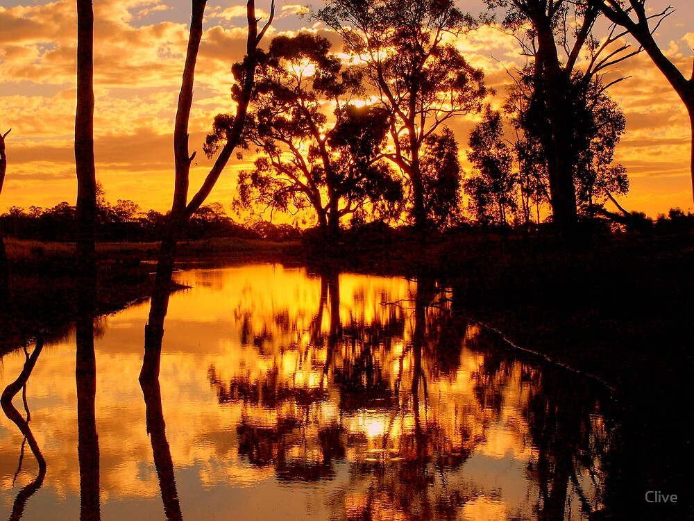 Golden reflections by Clive