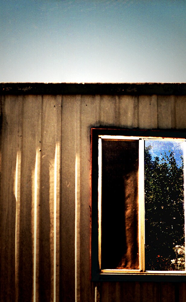 The Back Shed by JOSlyn