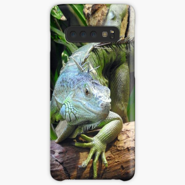 Green Iguana Samsung Galaxy Snap Case