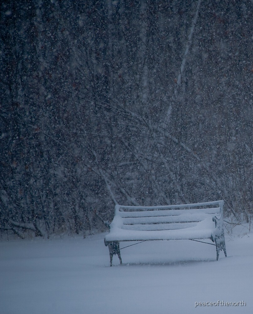 Spring Bench by peaceofthenorth