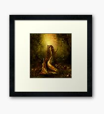 Mermaid of the lake Framed Print