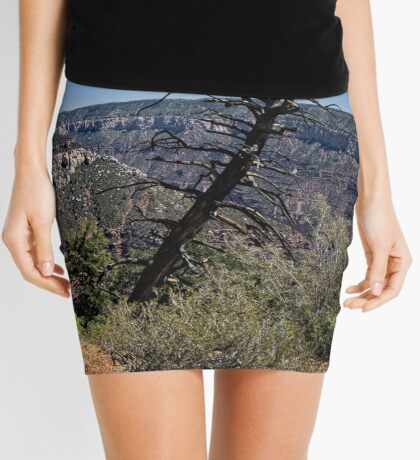 The Rest Of My Days Mini Skirt