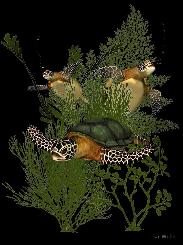 For The Love of Sea Turtles by Lisa  Weber