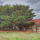 Old Barn by JaninesWorld