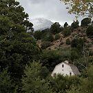 Rockledge Ranch Below Pikes Peak, Colorado, USA by Lori Peters