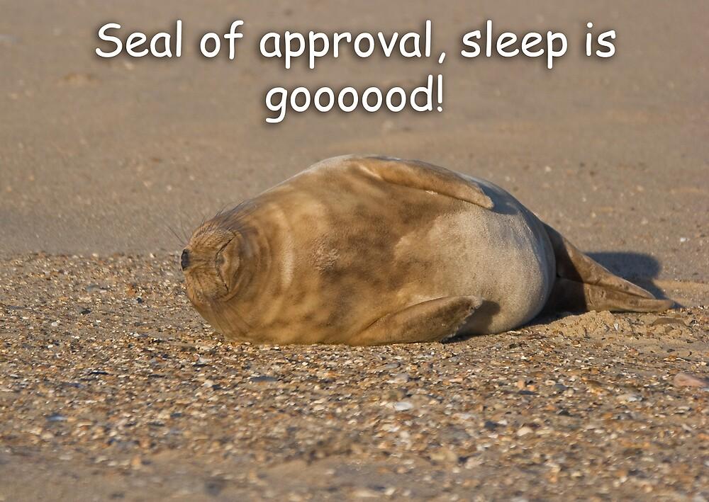 Sleep is Good! by Carole Stevens