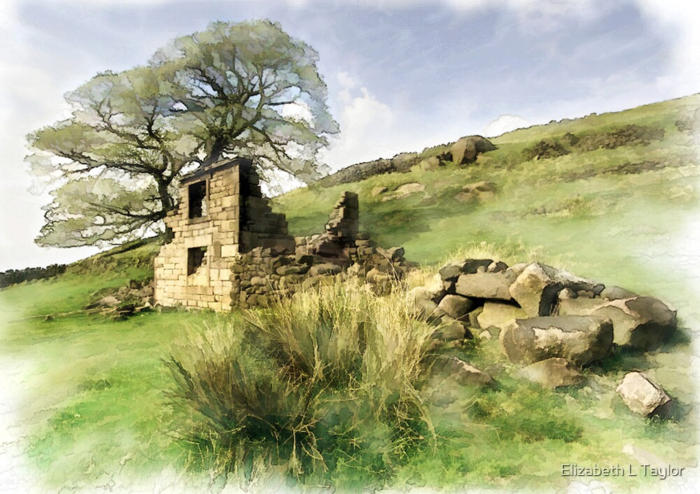 Ruined Cottage on the Roaches by Elizabeth L Taylor