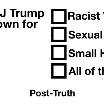 EXAM : Donald J Trump is well known for ... Racist Views? (#PostTruth) by majinstevieart
