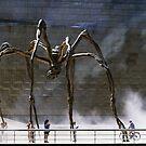 SpiderTalkingMan by RosaCobos