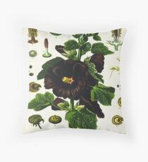 Althaea rosea cav Throw Pillow