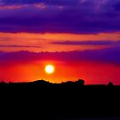 Hot Country Evenings by Vince Scaglione